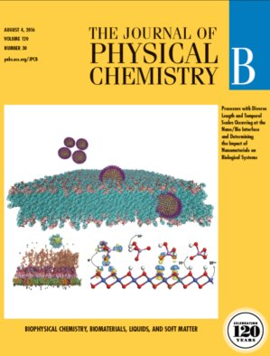 Cui_JPCB2016_SustainableNanotechREV_COVER_LOWRES