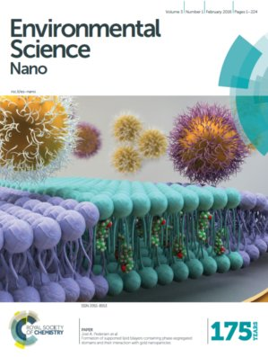 Melby_ESNano2016_FormationSLBphasteSegDomainAuNP_COVER_LOWRES