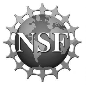 nsf-5-crop-bw